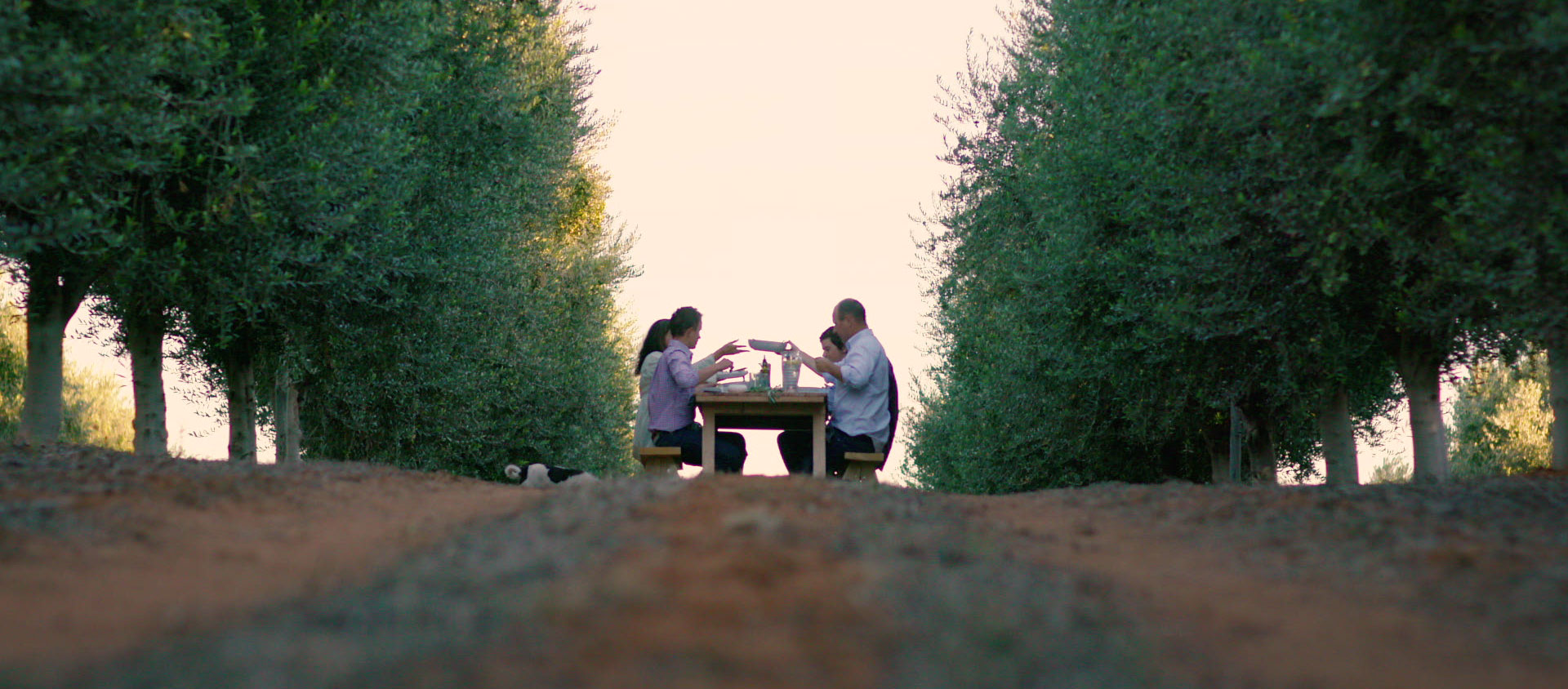 Cobram Estate Olives is a proud Australian-owned business, founded by two passionateAustralian farmers.